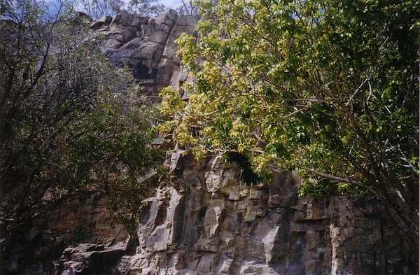 photo of Kangaroo Point Cliffs